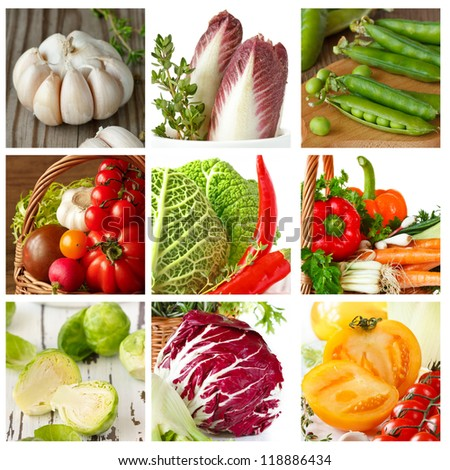 Colorful collage of fresh ripe vegetables. - stock photo