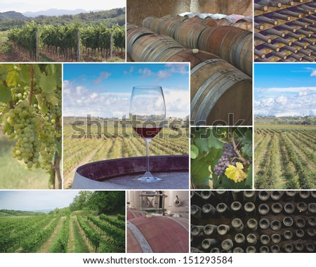 Colorful collage of  vineyards and wineries images