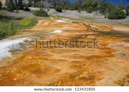Colorful composition of the thermal sources in Mammoth Springs, Yellowstone National Park, Wyoming, USA - stock photo