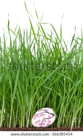 Colorful Easter egg over bright green grass on the organic soil over white background - stock photo