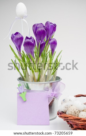 Colorful easter eggs and beautiful flowers (easter composition)