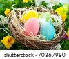 colorful Easter Eggs in a nest on the grass - stock photo
