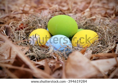 Colorful Easter eggs in the nest on dry leaves with blurred background.Vintage
