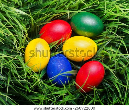 Colorful Easter eggs on green grass. Top view. Yellow, red, green and blue eggs painted for the Easter. Organic healthy eco food rich in minerals and vitamins. - stock photo