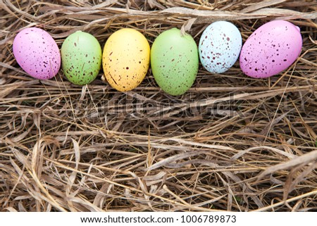 Colorful egg on grass in line. Easter day. Spring time.