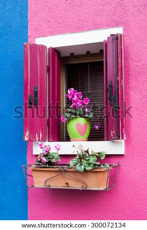 Colorful facade of house with flowerpot and flowers on windowsill in Burano island in the Venetian Lagoon - stock photo