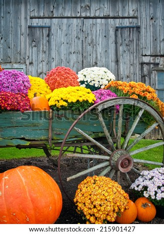 Colorful fall flowers and pumpkins in old antique wagon against a barn background vertical.