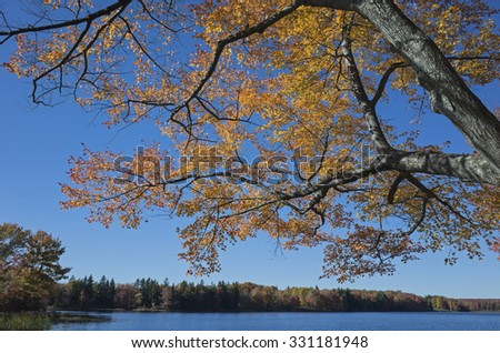 Colorful fall foliage reflecting in a bright blue lake under a cloudless sky in the Pocono mountains.  The Pocono mountains are known for their striking fall colors.  - stock photo
