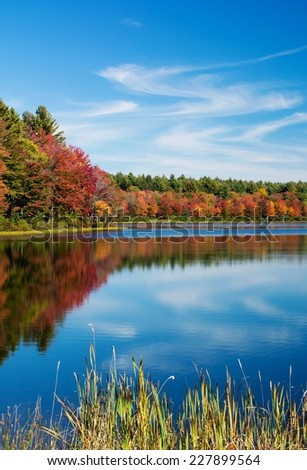 Colorful fall foliage surrounding a pond with a blue sky and water. - stock photo