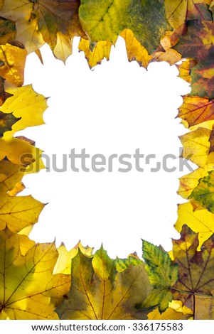 Colorful fallen autumn leaves frame border