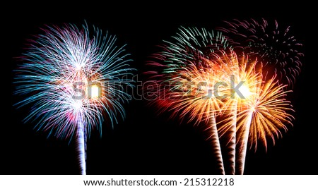 Colorful firework in a night sky