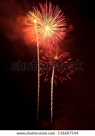 Colorful fireworks bursting in the night sky