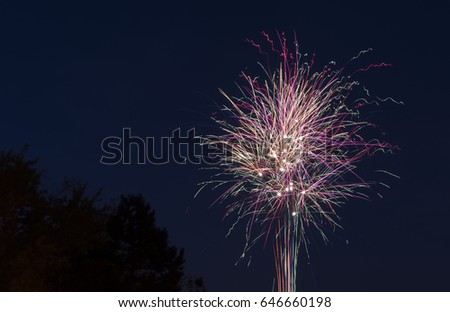 Colorful fireworks twirling and shining in the night sky, set against dark trees, celebration concept