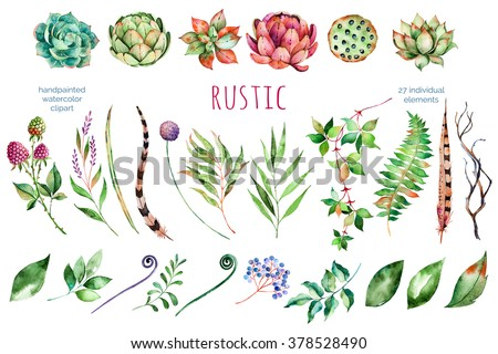 Colorful floral collection with artichoke,flowers,leaves,feathers,succulent plant,branches,raspberry,lotus and more,Colorful floral collection with 27 watercolor elements.Set of floral elements  - stock photo
