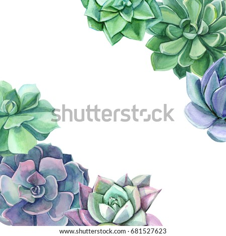 Colorful Floral Watercolor Succulents Perfect For Weddingframequotespatterngreeting Card