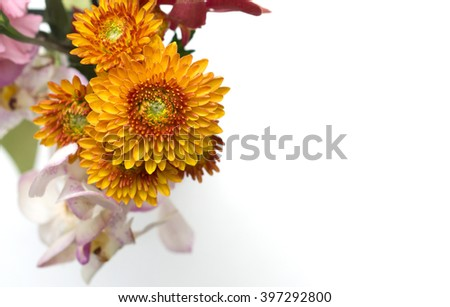 Colorful flower bouquet arrangement isolated on white background - stock photo