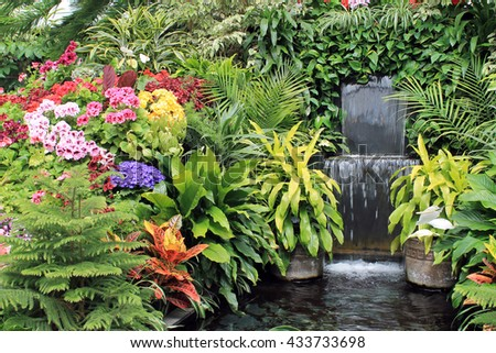 Colorful Flowers and a Waterfall in a Display Greenhouse