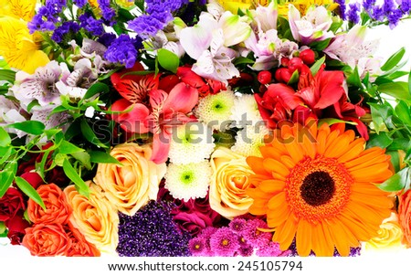 Colorful Flowers Bouquet Isolated on White Background - stock photo
