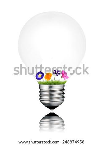 Colorful Flowers Growing Inside Light Bulb Isolated on White Background. Light bulb has a reflection - stock photo
