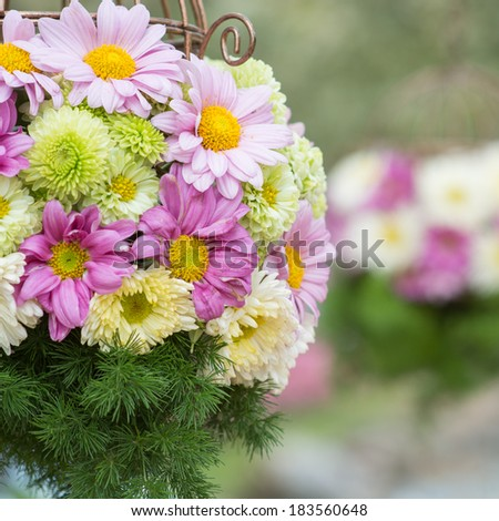Colorful flowers in a hanging basket. - stock photo