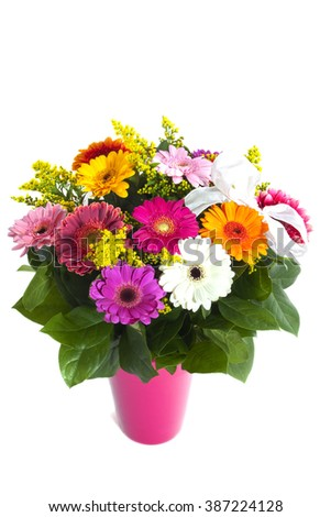 Colorful flowers in pink flowerpot isolated over white - stock photo