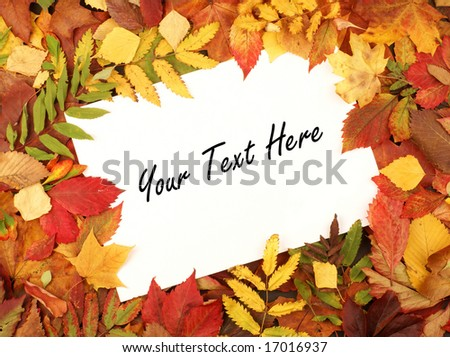 Colorful frame of fallen autumn leaves - stock photo