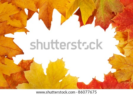 Colorful frame of fallen autumn leaves  isolated on white
