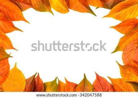 Colorful frame of fallen autumn leaves on the white background with coy space - stock photo