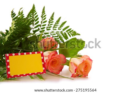 Colorful fresh roses flowers isolated on wood  background. - stock photo
