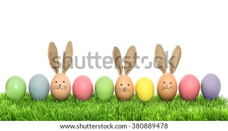 Colorful funny bunny easter eggs in green grass over white background - stock photo