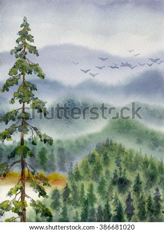 Colorful handwork watercolour drawing sketchy on paper backdrop with space for text on grey heaven. Quiet northern summertime dusk. Lush old green firtree over calm taiga valley near cool white creek - stock photo