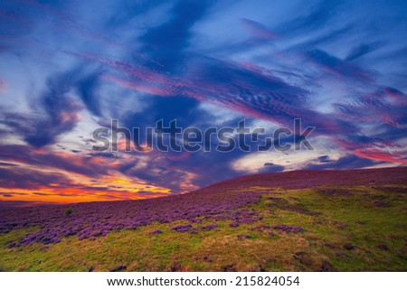 Colorful hill slope covered by violet heather flowers and beautiful dramatic sky. Pentland hills, Scotland - stock photo