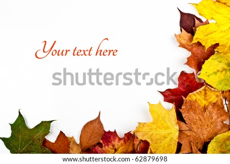 Colorful horizontal frame of fallen autumn leaves