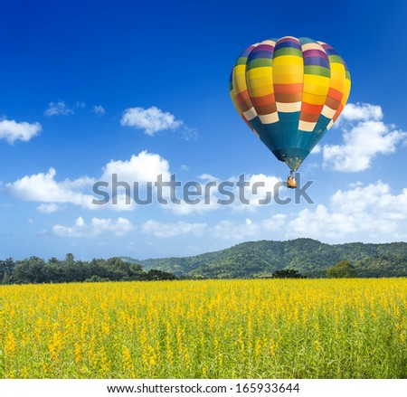 Colorful hot air balloon over yellow flower fields with blue sky background - stock photo