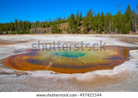Colorful hot water pool in the Yellowstone National park, USA