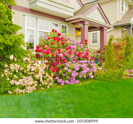 Colorful house entrance with a lot of flowers covering front side