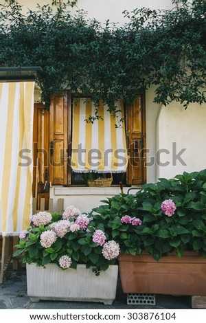 Colorful house facades, Mediterranean architecture with a hydrangeas planted nearby