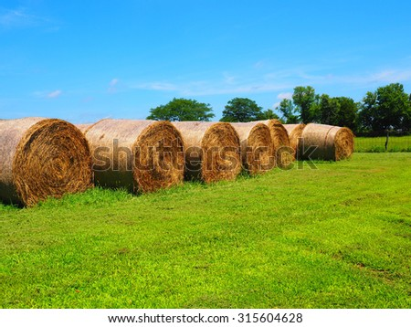 colorful image of round rolled hay bales        - stock photo