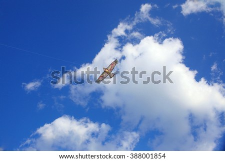Colorful kite flying in the sky with clouds