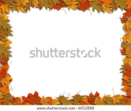Colorful Leaf border on white background with space for copy.