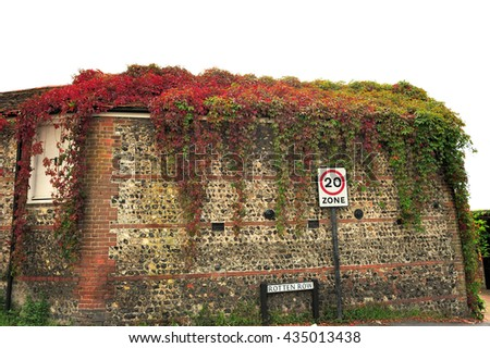 Colorful leafs on the stone wall - stock photo
