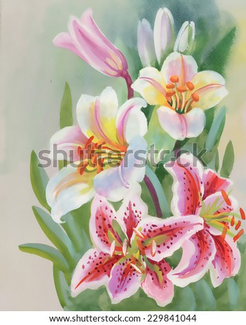 Colorful Lily flowers, watercolor illustration - stock photo