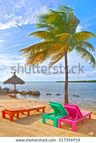 Colorful lounge chairs at a tropical paradise beach in Florida Keys. Beautiful aqua green waters of the ocean,  palm trees and a blue sky in the background  - stock photo