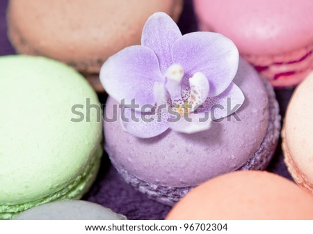 Colorful macaroons with orchid - stock photo