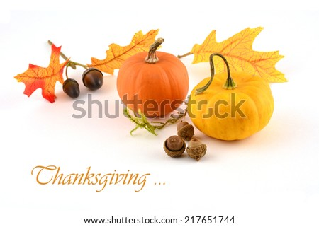 Colorful miniature pumpkins, oak leaves and acorns on a white background in horizontal format - stock photo