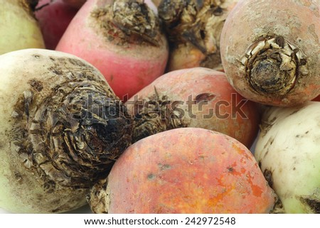 colorful mix of red,yellow and white beets background - stock photo