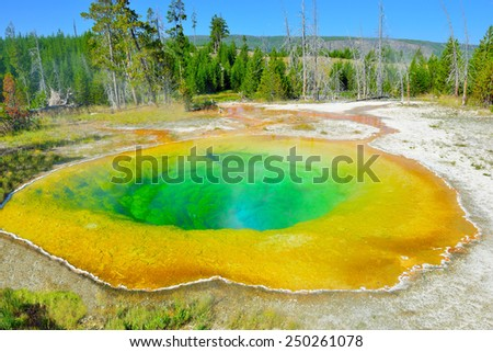 colorful Morning Glory geyser in Upper Geyser basin of Yellowstone National Park, Wyoming - stock photo