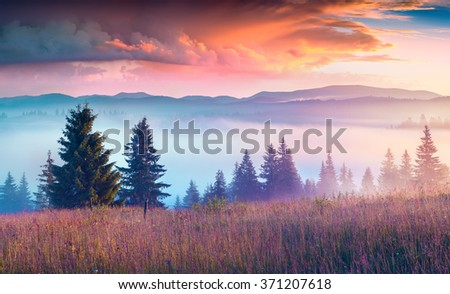 Colorful morning scene in the Carpathian mountains with rolling hills and valleys in golden morning light. Foggy sunrise in Ukraine, Kvasy village location, Ukraine, Europe. Instagram filter toned. - stock photo