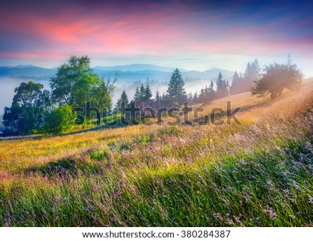 Colorful morning scene in the mountains with rolling hills and valleys in golden morning light. Foggy sunrise in Carpathians, Kvasy village location, Ukraine, Europe.