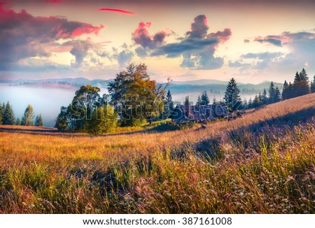 Colorful morning scene in the mountains with rolling hills and valleys in golden morning light. Foggy sunrise in Carpathians, Kvasy village location, Ukraine, Europe. instagram toning. - stock photo
